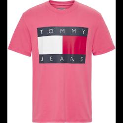 Tee Shirt Tommy Jeans DM0DM07009